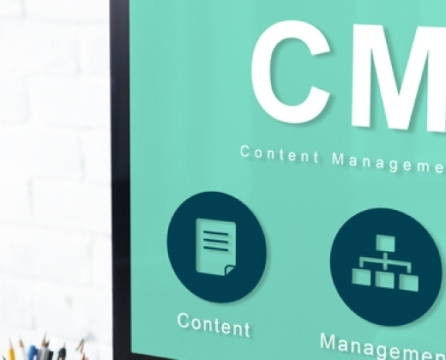 Maximize your Content Management System with Website Customization