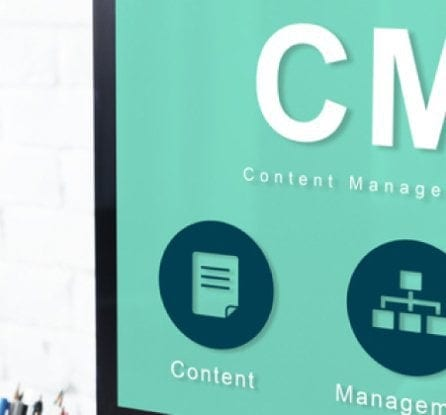 Women looking at computer screen that says CMS - and the title Maximize your Content Management System with Website Customization