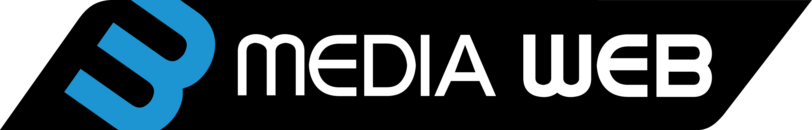 3 Media Web Solutions, Inc.