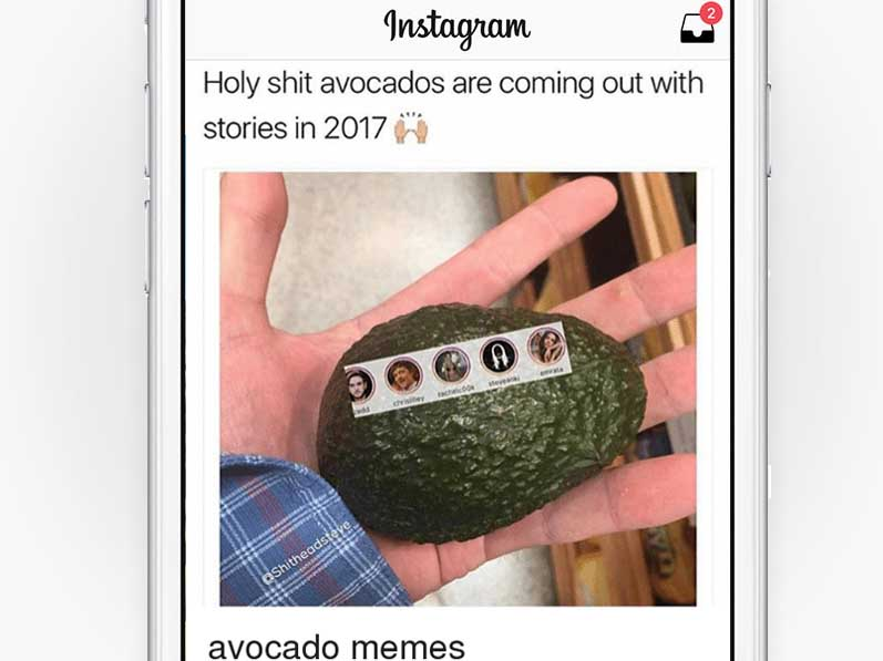 Avocado Stories.