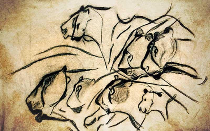 Chauvet Cave Art Lions.