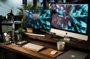 two computers screens with trees on monitor
