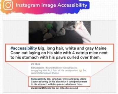 Instagram Image Accessibility & User Hashtags.