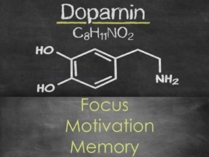 Storytelling Dopamine Suspense Focus Motivation Memory