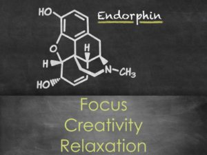 Storytelling Endorphins Focus Creativity Relaxation