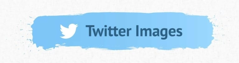 Twitter Image Accessibility Header.
